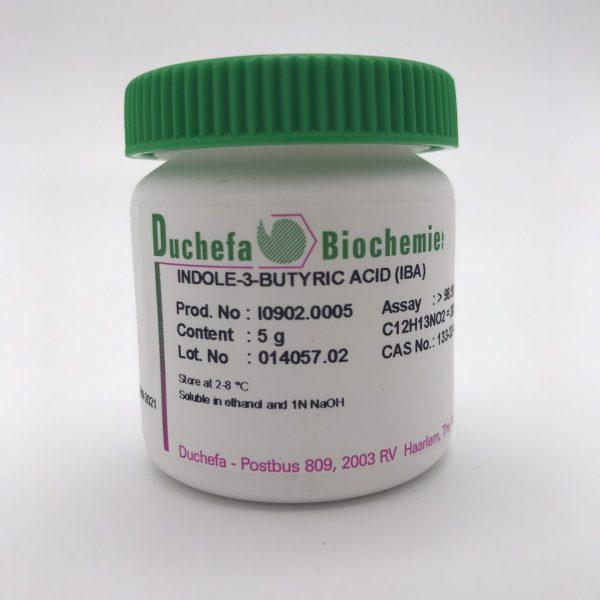 IBA Duchefa 2020