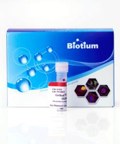 Gelred thuốc nhuộm thay thế Edithium Bromide (EtBr)